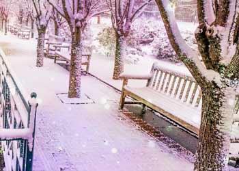 winter_20_2